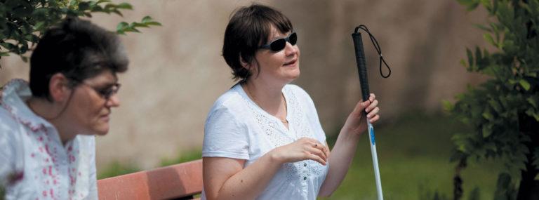L'accompagnement au quotidien de la personne déficiente visuelle - Handicap et accompagnements - Adèle de Glaubitz